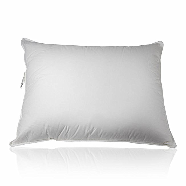 Best Luxury Pillows