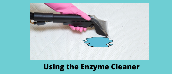Cleaning mattress by enzyme
