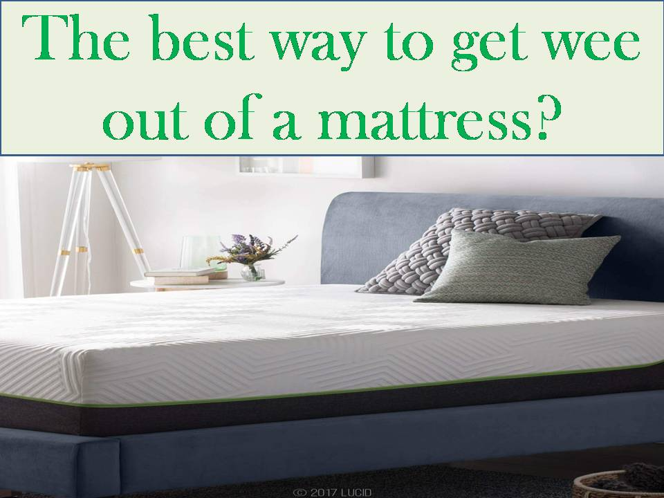 best way to get wee out of a mattress