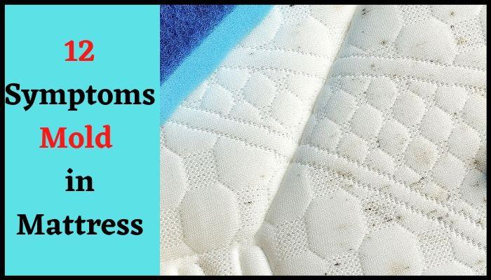 mold symptoms in mattress
